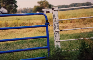 About JJJ & M Organic Farms - freshly painted blue gate and white fence